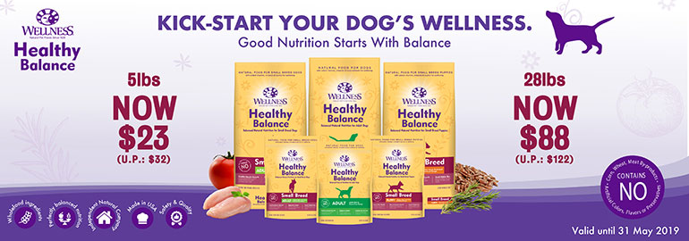 wellness dog offer