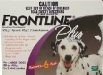 Frontline Plus for Large Dog 20-40kg